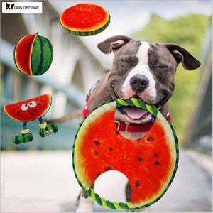 Watermelon Tug Rope Dog Toy-Dog Options