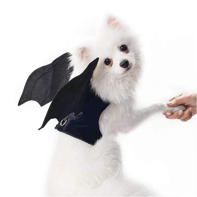 Bat Wings Costume For Small Pet-Dog Options