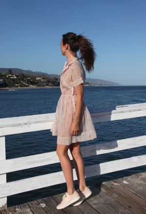 Antique Sheer Blush Dress