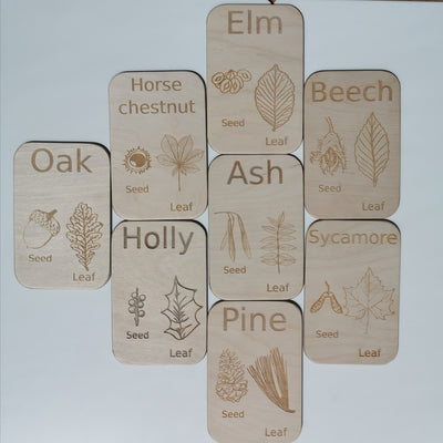 Tree and Seed Flashcards - Set 1