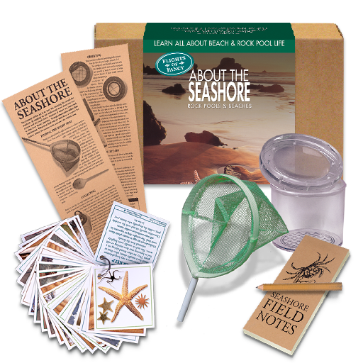 About The Seashore Kit