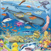 Marine Life in the Pacific Ocean