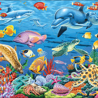 Marine Life on a Coral Reef