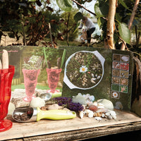 Mud Kitchen Activity Cards