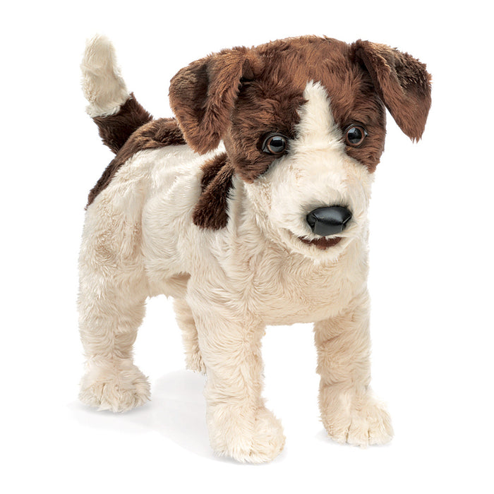 Jack Russell Smooth Coat Puppet