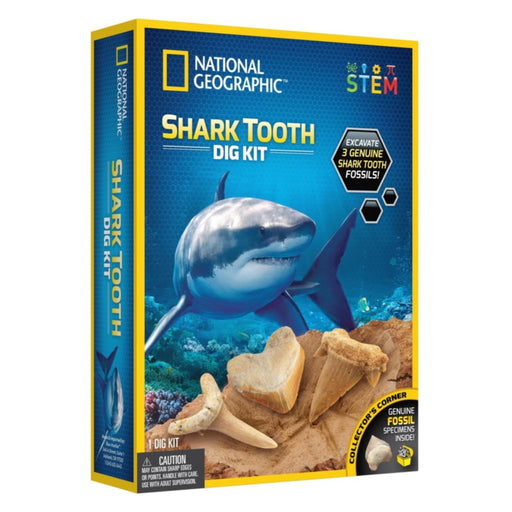 Shark Tooth Dig Kit