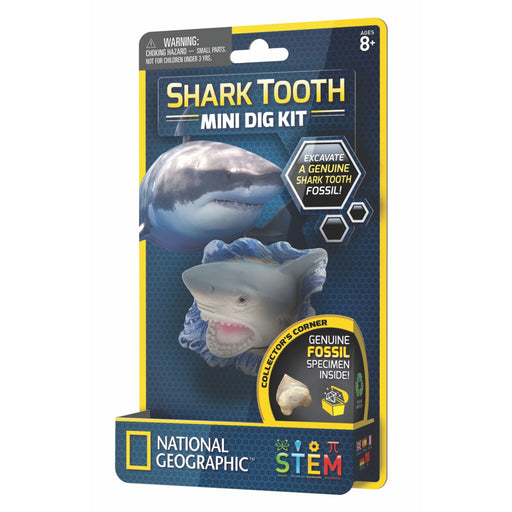 Mini Dig Kit - Shark Tooth