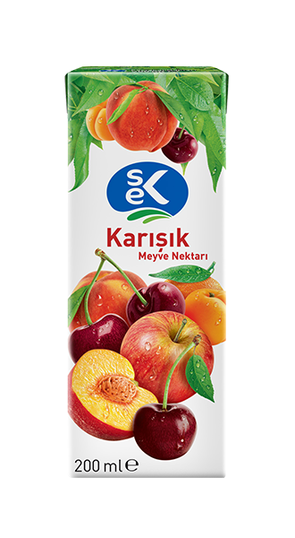 SEK FRUIT JUICE MIXED (TETRA PACK)/MEYVE SUYU KARISIK 27X200 CC