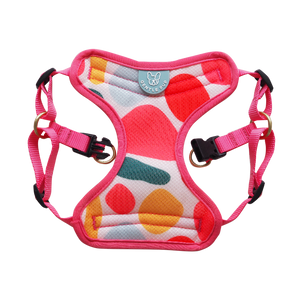 Gentle Pup - Candy Callie Easy Harness