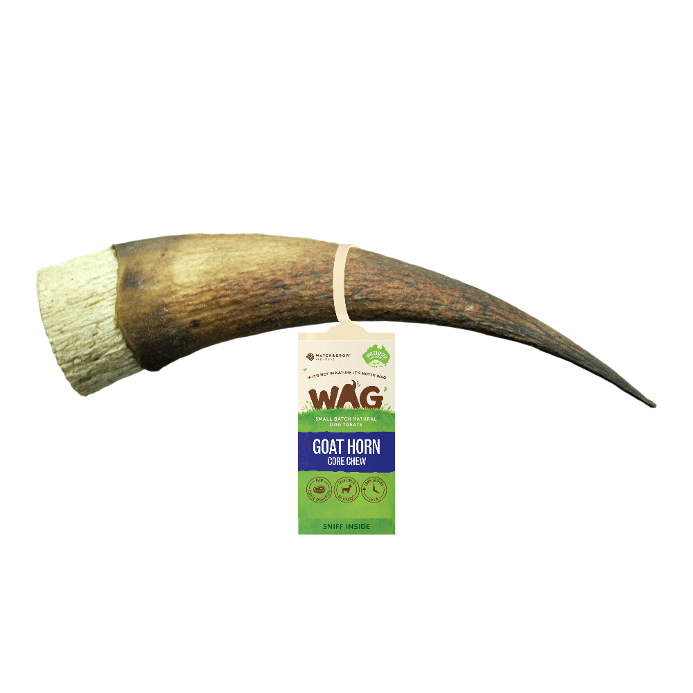 WAG Goat Horn Core Chew