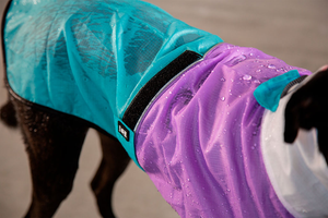 Zee.Dog Bel-Air Raincoat