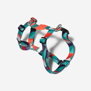 Zee.Dog Ella Dog H-Harness