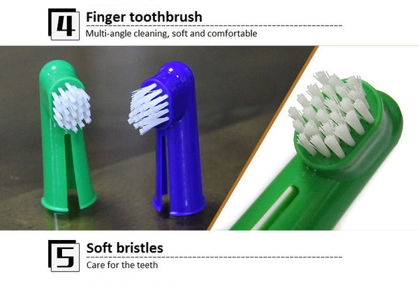 Pet Tooth Brush and Flavored Paste Set