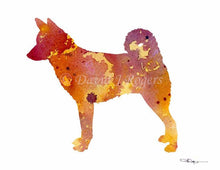 Load image into Gallery viewer, A Canaan Dog 0 print based on a David J Rogers original watercolor