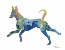 Load image into Gallery viewer, A Ibizan Hound 0 print based on a David J Rogers original watercolor