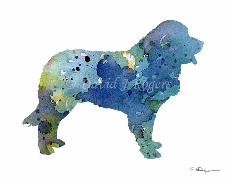 A Leonberger 0 print based on a David J Rogers original watercolor