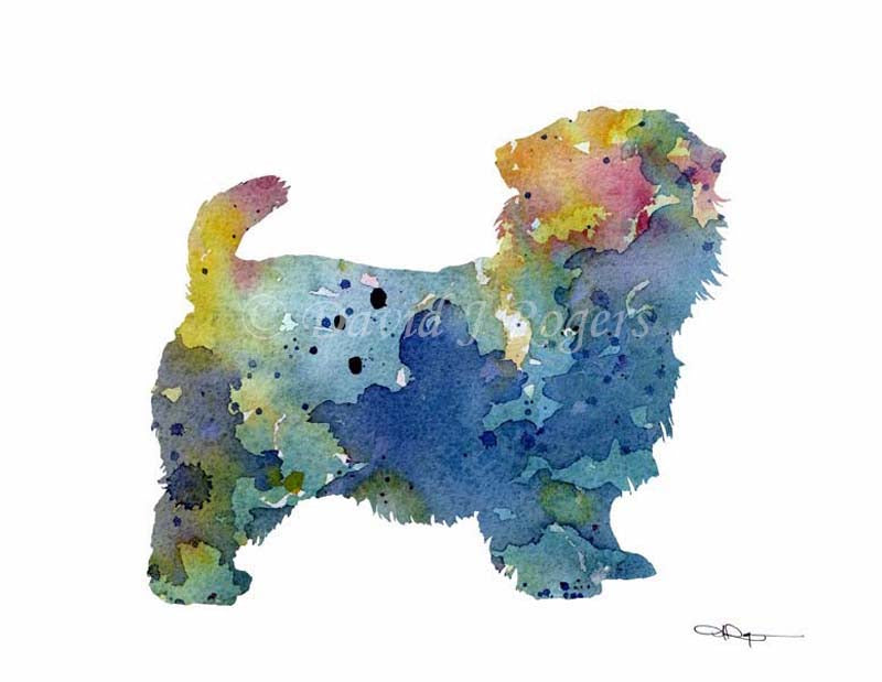 A Norfolk Terrier 0 print based on a David J Rogers original watercolor