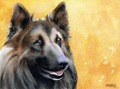 Belgian Tervuren Dog Wall Art Print Poster Picture Painting Room Decor