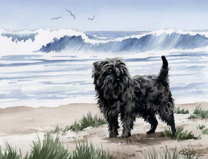 Affenpinscher Dog Wall Art Print Poster Picture Painting Bedroom Room