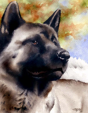 Akita Dog Wall Art Print Poster Picture Painting Bedroom Room Decor