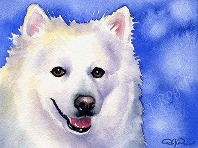 A American Eskimo portrait print based on a David J Rogers original watercolor