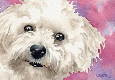 Bichon Frise Dog Wall Art Print Poster Picture Painting Room Decor