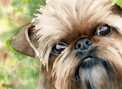 A Brussells Griffon portrait print based on a David J Rogers original watercolor