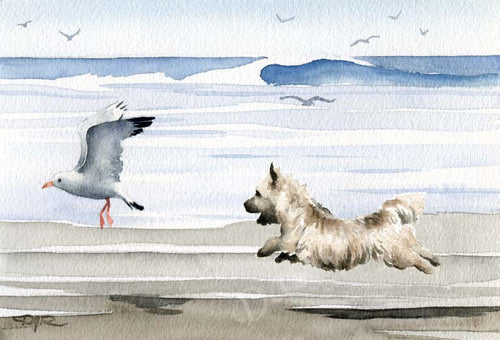 A Cairn Terrier beach print based on a David J Rogers original watercolor