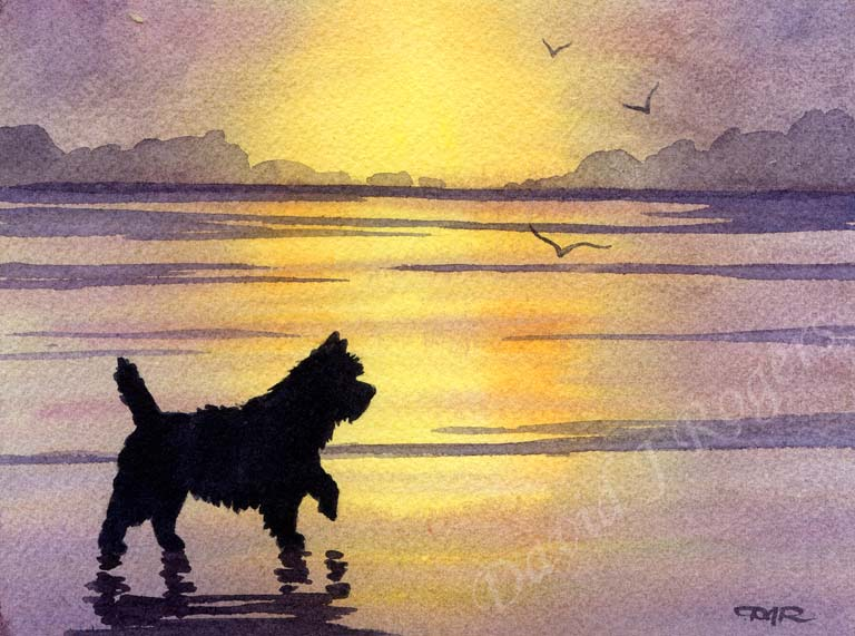 A Cairn Terrier sunset print based on a David J Rogers original watercolor