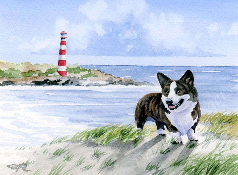 A Cardigan Welsh Corgi beach print based on a David J Rogers original watercolor