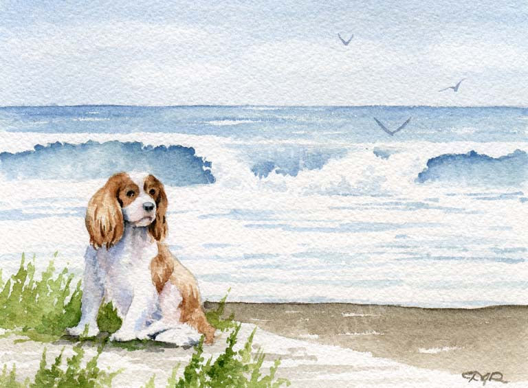A Cavalier King Charles beach print based on a David J Rogers original watercolor