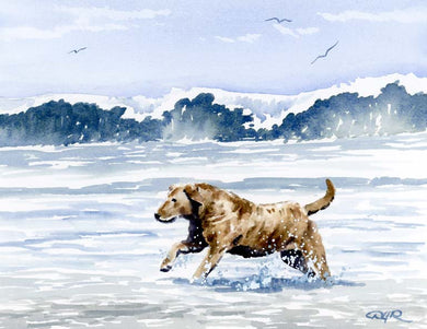 A Chesapeake Bay Retriever beach print based on a David J Rogers original watercolor