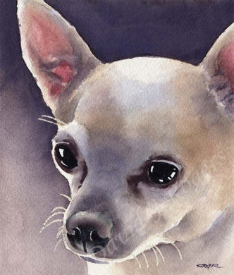 A Chihuahua portrait print based on a David J Rogers original watercolor