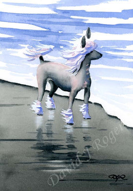 A Chinese Crested beach print based on a David J Rogers original watercolor
