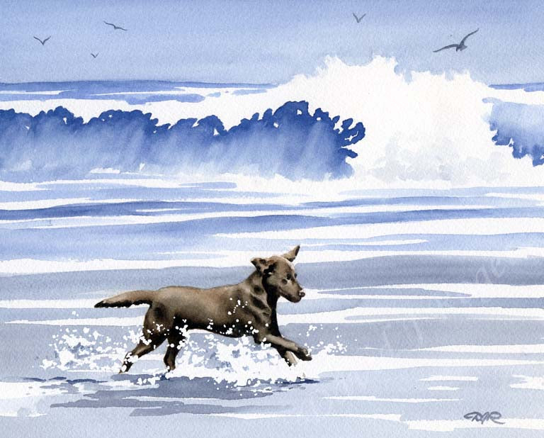 A Chocolate Lab beach print based on a David J Rogers original watercolor