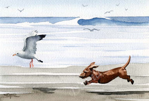 A Dachshund beach print based on a David J Rogers original watercolor
