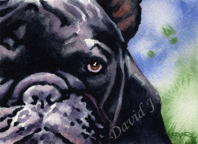 A French Bulldog portrait print based on a David J Rogers original watercolor