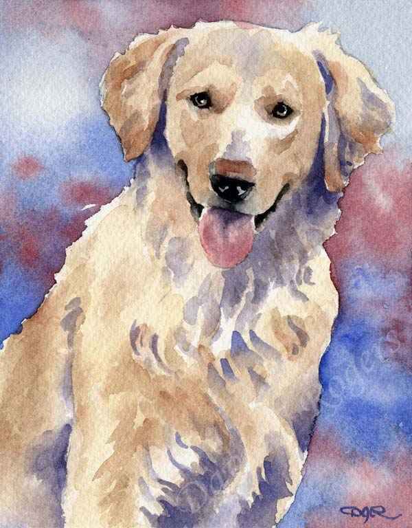 A Golden Retriever portrait print based on a David J Rogers original watercolor