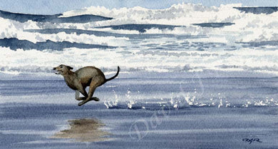 A Greyhound beach print based on a David J Rogers original watercolor