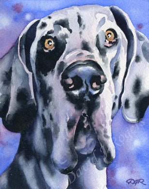 A Harlequin Great Dane portrait print based on a David J Rogers original watercolor