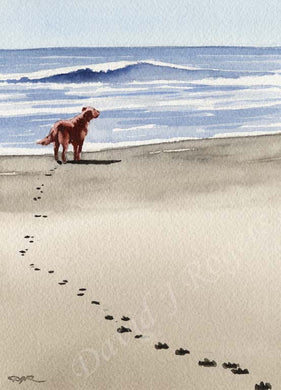A Irish Setter beach print based on a David J Rogers original watercolor