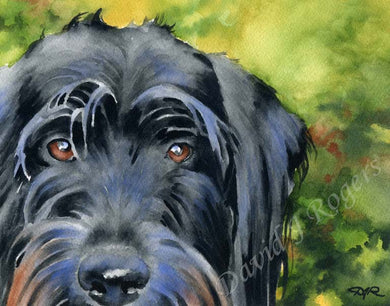 A Labradoodle portrait print based on a David J Rogers original watercolor