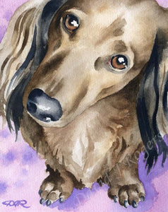 A Long Haired Dachshund portrait print based on a David J Rogers original watercolor