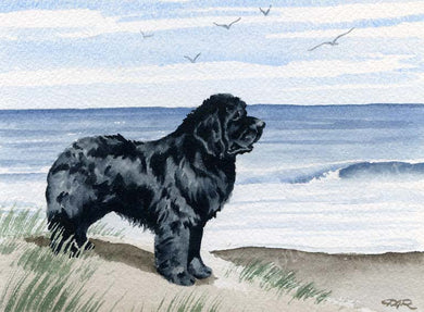 A Newfoundland beach print based on a David J Rogers original watercolor