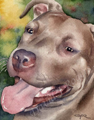 A Pit Bull portrait print based on a David J Rogers original watercolor
