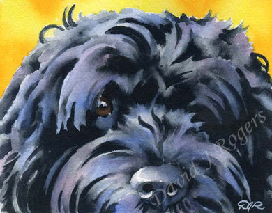 A Portuguese Water Dog portrait print based on a David J Rogers original watercolor