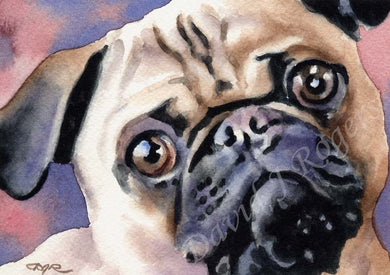 A Pug portrait print based on a David J Rogers original watercolor