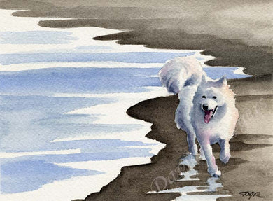 A Samoyed beach print based on a David J Rogers original watercolor