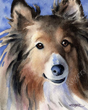 Load image into Gallery viewer, A Shetland Sheepdog portrait print based on a David J Rogers original watercolor