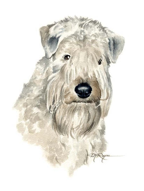 A Soft Coated Wheaten Terrier portrait print based on a David J Rogers original watercolor